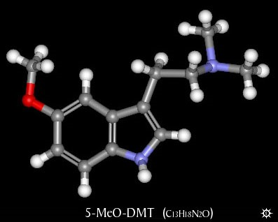 5-MeO-DMT — The God's Molecule