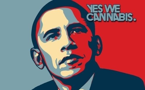 Obama Cannabis