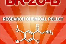 What You Have to Know about BK-2C-B